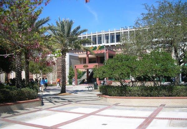 University of South Florida Main Campus