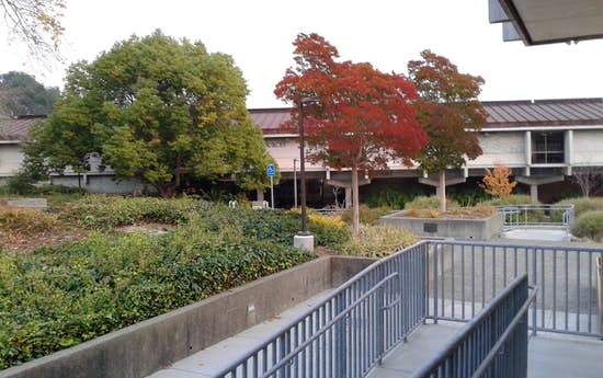 Colleges In Rodeo California And Near